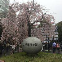 2018年3月 仕事の途中に上野公園で花見