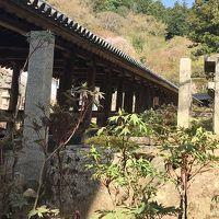 西国33所巡礼の旅(その3 奈良)