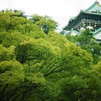 *.:・.。大阪旅行2 1/3 〜大阪城・天神橋筋商店街・USJ〜*.:・.。