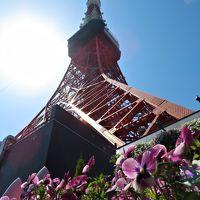 �【祝60周年】 東京タワーへ遊びに行こう!(・ω・)/♪