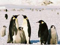 2018秋 南極へ  決意編 15年を経て