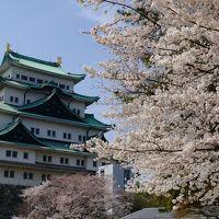 車で京都へ。フォトジェニックな旅。(3日目)