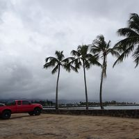 二年ぶりのハワイは初めてのトロリー付き 二日目はハレイワ