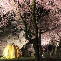 2018 APR 【日本100名城No.85】福岡城 桜の季節恒例のさくらまつり  作成中