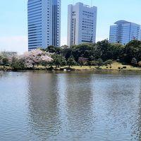浜離宮恩賜庭園3/3 歴史を語る水辺の風景 ☆公開旅行記4700冊記念!
