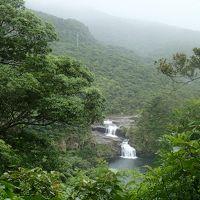 ツアーでGO!!/西表島でカヌー&トレッキングプチ体験+生き物観賞3日間