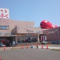 驚きの茨城県 大洗観光と百里基地 (6-3) メヒコでランチ、かねふくで明太子