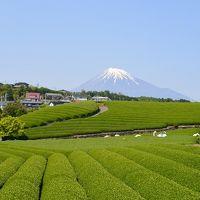 富士滞在 4〜5月