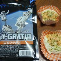 日帰り旅行 再びの茨城県 JAXAと牛久大仏 (3-2) ガイド付き施設見学ツアーと宇宙食