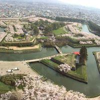 桜満開の五稜郭