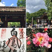 2018年5月GW 深大寺と神代植物園