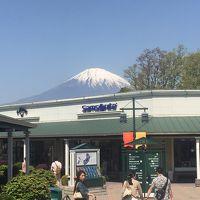 東京→名古屋自転車旅2日目: 御殿場アウトレット→箱根→富士