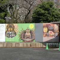 国立博物館へ。仁和寺と御室派のみほとけ展(2018年2月)