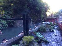 チリ南部プコンで温泉&春の湖畔散歩