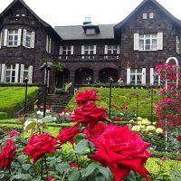 旧古河庭園のバラ、六義園