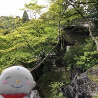 滋賀に新緑を見に行きました