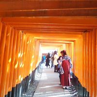 京都奈良へ(3)伏見稲荷大社・御茶屋特別公開&京阪電車