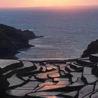 九州棚田ツアー