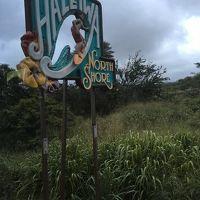 デコボコ4人組のHawaii旅�