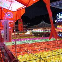 週末釜山★三光寺の燃灯祭