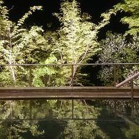 飛騨・富山・長野を周遊 (10-10) 幻想的な夜の露天風呂に感動