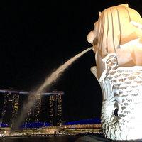 プラチナチャレンジ�シンガポール観光