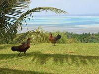 ここぞ南の島パラオへ5日間の旅
