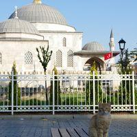 トランジット イン イスタンブール 猫のいるアヤソフィア博物館