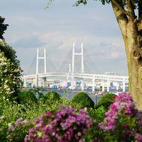 2018横浜&鎌倉ふらり旅vol.1(横浜港の汽車道と氷川丸&港の見える丘公園)