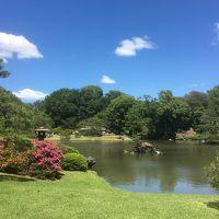 2018年5月 都立9庭園を廻る� 六義園