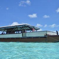 124. UA特典でクック諸島�見ずには死ねない青い海。アイツタキ日帰りツアー。