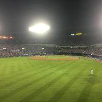 2018年6月 ソウルでプロ野球観戦&競馬(1日目)