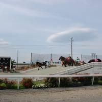 初夏の帯広ーばんえい競馬を楽しんだ