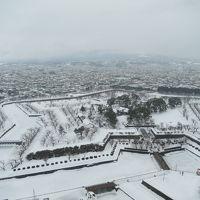 函館冬2018(その3:函館朝市から五稜郭へ)