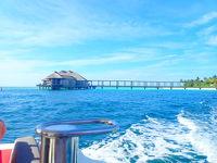 モルディブ フラワリアイランドリゾートとシンガポール立寄り9日間 リラックスとアクティブ共存の旅 Part5 マンタツアーとドロップオフ編