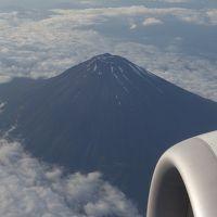 ボーイング737-800に乗りました。成田−中部の便NH337。富士山がよく見えました。