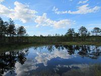 エストニア旅【ラヘマー国立公園ツアー】
