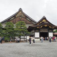 修学旅行以来約30年ぶりの京都旅 �まずは世界遺産&日本百名城の二条城へ。そして夜はなぜか京セラドームで交流戦観戦
