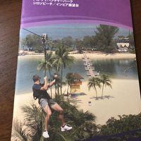 2018弾丸シンガポール一泊三日 その4