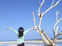 冬のニューカレドニアに行ってみた Vol.1 ヌメア到着編