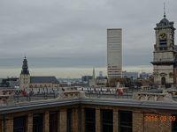 ヨーロッパ美術館巡り —ベルギー・オランダ7日間の旅— その5