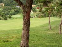 軽井沢のような中国避暑地、大連でゴルフ