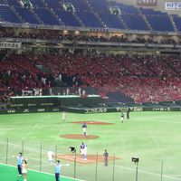 [野球] 野球を見る旅-東京編・前編-(2018.7.14)