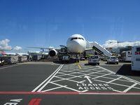 ニュージーランド南島旅行 1