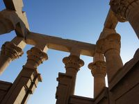 【5】文化遺産の周りを縦横無尽に駆けぬける犬の親子を見た☆エジプト:アブシンベル