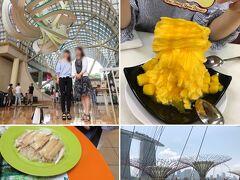 2018年夏☆ソウル発券2泊5日シンガポール旅【4】シンガポール3日目★最終日もアクティブ観光&JALプレエコ帰国便
