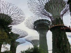 シンガポールへ家族旅行