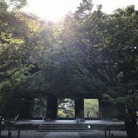 真夏☆アメリカの友人を京都案内