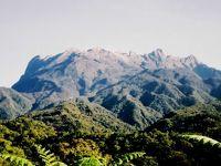初めての東南アジアはボルネオ島=1990年10月〜11月