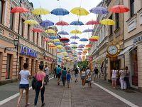 ボスニア・ヘルツェゴビナ第2の都市Banja Luka(バニャ・ルカ)へ その3(街歩き&復路)